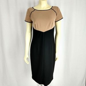 Ann Taylor Brown and Black Shift Dress